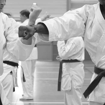 Shorinji Ryu Karate Do